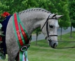 Harford County Equestrian Center